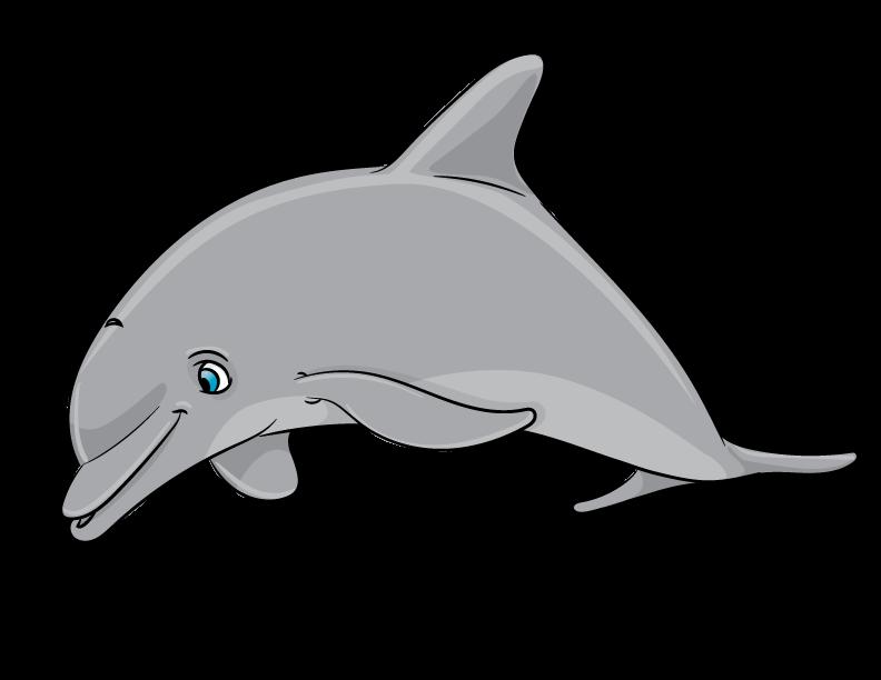 Dashing Dolphins - Intermediate Classes - Little Otter Swim School